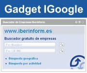 Gadget I google buscador